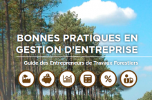 Guide for good practice in forestry work business management
